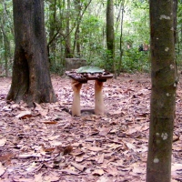 Combative Cu Chi Tunnels; Tunnels, Tapioca and Typhoon