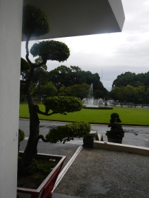 Bonsai Tree at Independence Palace