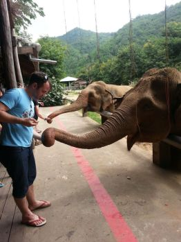 Craig feeds one of the Elephants affected by blindness